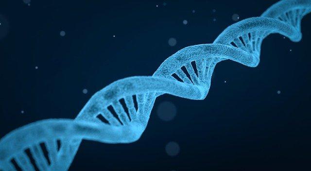 Genetická mutácia